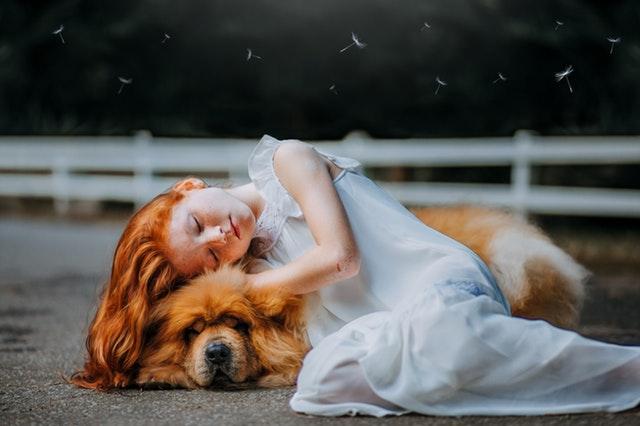 Dievča v bielych šatách, s ryšavými vlasmi, leží a spí na ryšavom veľkom psovi.jpg