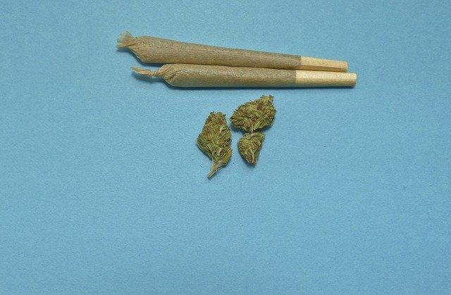 Zdravotná marihuana.jpg
